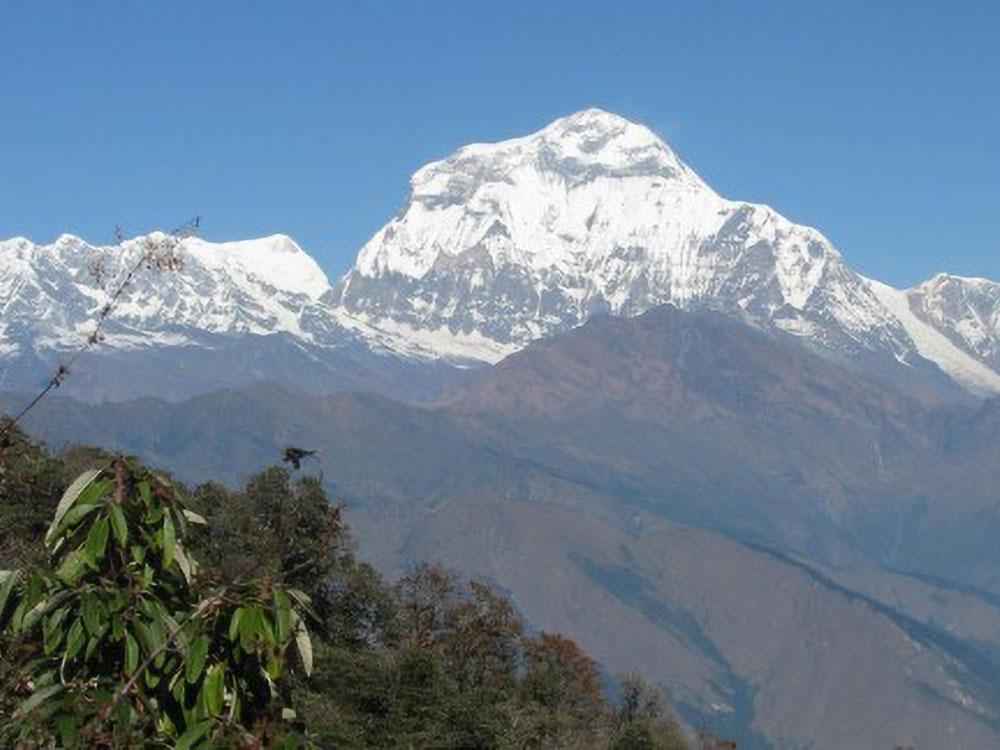 Dhaulagiri (8167 m)